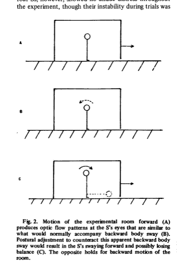 Figure 2 from thr 1974 Paper by Lee and Aronson. There are three panels showing a) a stick figure representing an infant standing in the swinging room. b) the infant's internal response to the walls swinging away (which is indicated by a dotted line showing that the infant senses that they are swaying backwards.) Panel c shows the infant stick figure with a solid line arcing towards the front of the room, showing the direction of most infants' motor responses. there is also a dotted version of the stick figure lying on the floor, presumably to indicate the children who fell on their asses - or faces.