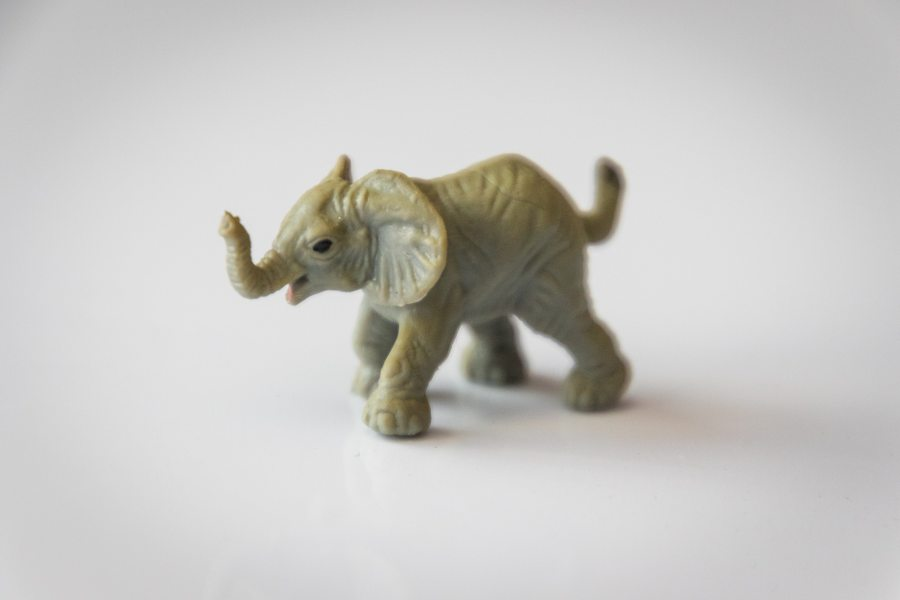 A picture of a small plastic toy elephant with a raised trunk and a bit of a cheeky look in its eye